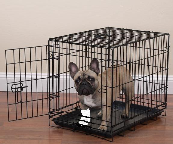 Dog Travel Cages For Sale Nz